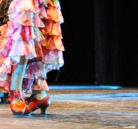 47-corsi-flamenco-bologna4bis